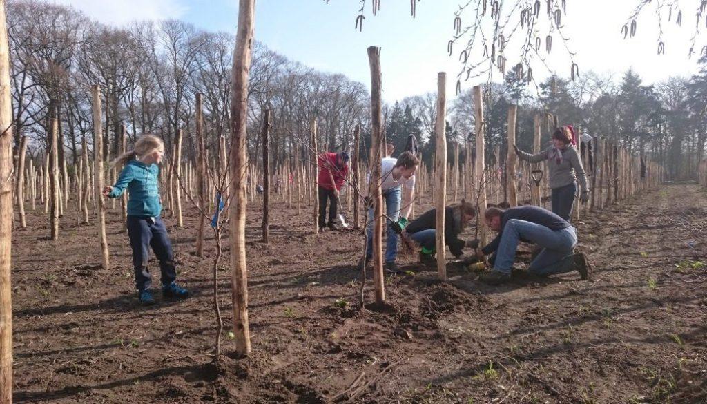 In 2 dagen 3066 fruitbomen geplant