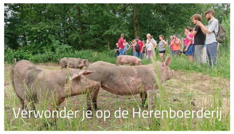 Verwonder-je-op-de-Herenboerderij-1024x585
